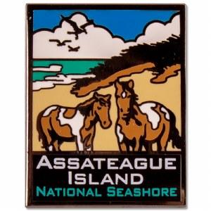 Assateague Island National Seashore Pin