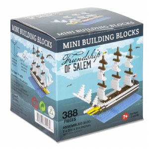 Friendship of Salem Mini Blocks