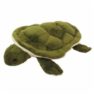Adopt A Turtle Plush