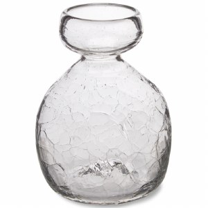 Clear Glass Bulb Forcer