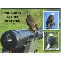 The Eagles at Fort Donelson Magnet