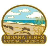 Indiana Dunes Pin