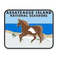 Assateague Island Survivor Pin
