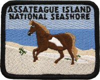 Assateague Island Survivor Patch