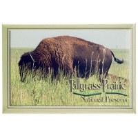 Tallgrass Prairie National Preserve Magnet