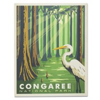 Congaree National Park Classic Travel Poster