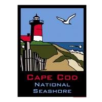 Cape Cod ANP Lapel Pin