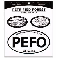 Petrified Forest NP Triple Decal