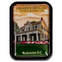 Frederick Douglass Lapel Pin