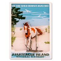 Assateague Island National Seashore Retro 3D Magnet