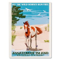 Assateague Island National Seashore Retro Magnet
