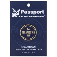 Steamtown Passport Pin