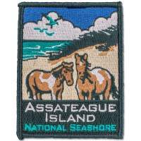 Assateague Island National Seashore Patch