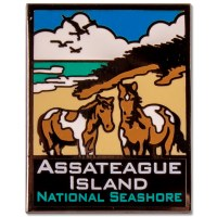 Assateague Island National Seashore Pin