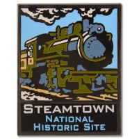 ANP Steamtown Pin