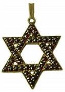 Star of David with garnet 14kty gold model 247-0209