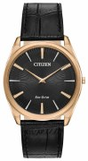 Citizen Eco Drive Stiletto Watch AR3073-06E