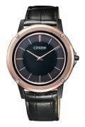 Citizen Eco-Drive Watch Model AR-5025-08E
