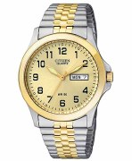 Citizen Quartz Watch Model BF0574-92P