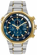 Citizen Eco Drive Endeavor Watch CA0444-50L