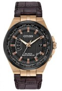 Citizen Eco Drive World Perpetual Watch CB0168-08E