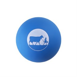 Dog Ball Squeaky