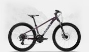 Devinci EWOC XP Disc 24 Purple