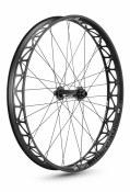 DT Swiss BR2250 Front Wheel