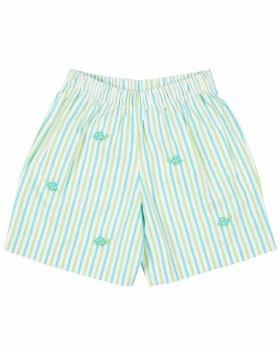 Aqua, Lime Stripe Seersucker Shorts, 100% Cotton, Turtles