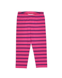 Fuchsia, Navy, Grey Stripe Legging
