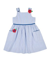 Blue and White Stripe Seersucker, 100% Cotton, Lined, Flowers