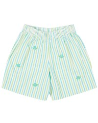 Aqua, Lime Stripe Seersucker Shorts, 100% Cotton, Turtles