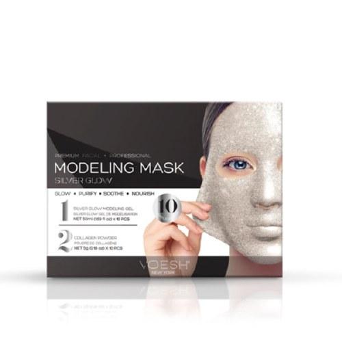 Voesh Modeling Mask Kit Silver