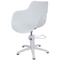 Joi Josie Styling Chair (P)