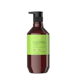 Theorie TTGinger Shamp 400ml