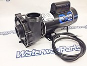 WATERWAY EX 2 PUMP 3 HP , 2 SPEED