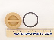 "WATERWAY FLUSH PLUG 1.5"" WITH GASKET"