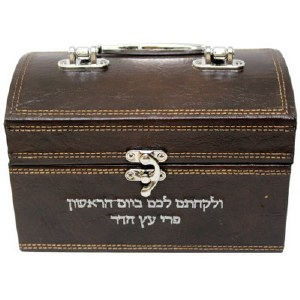 Brown Faux Leather Esrog Box with Handle and Clasp