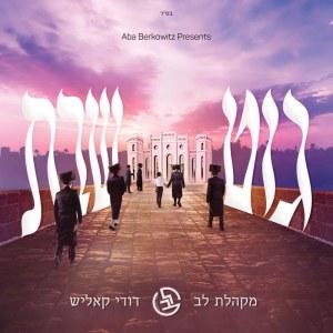 Git Shabbos Dudi Kalish and Lev Choir CD