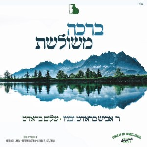 Bracha Meshuleshes CD