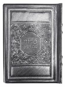 Siddur Eis Ratzon Slipcased Silver Antique Leather Elegant Design Ashkenaz