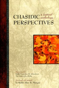 Chasidic Perspectives [Hardcover]