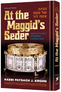 At The Maggid's Seder [Hardcover]