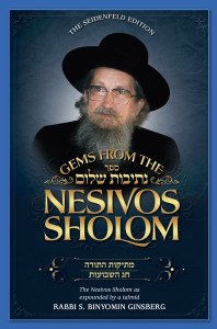 Gems from the Nesivos Shalom: Mesikus Hatorah & Chag Hashavuos [Hardcover]