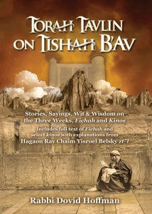 Torah Tavlin on Tisha B'av [Hardcover]