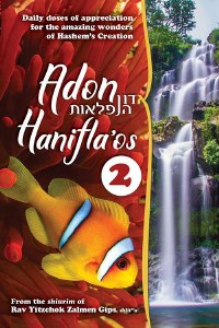 Adon Hanifla'os Volume 2 [Paperback]
