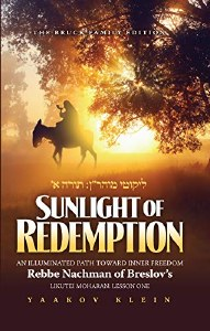 Sunlight of Redemption [Hardcover]