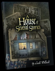 A House of Several Stories [Hardcover]