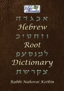 Hebrew Root Dictionary [Hardcover]