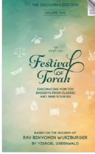 A Festival of Torah Volume 2 [Hardcover]